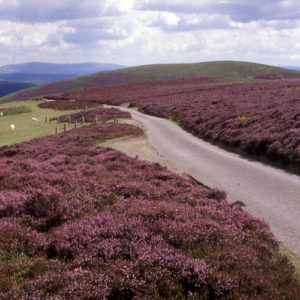 Byways Breaks - The Shropshire Hills